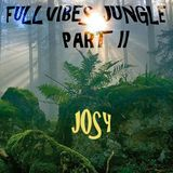 FullVibes Jungle Part II
