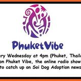 Soi Dog Chat 29th October