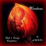 """"" WONDROUS """" chill & lounge compilation"