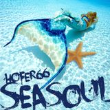 hofer66 - seasoul - live at seasoul beach ibiza - 170722