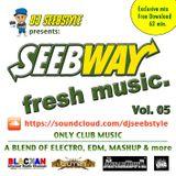 SEEBWAY FRESH MUSIC VOL.05