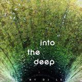 Into The Deep (Icrates Vinyls Sessions)