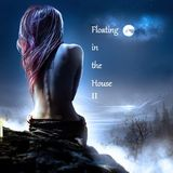 Floating in the House II