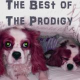 The Best of The Prodigy (3 Hour Mix)