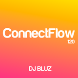 ConnectFlow Radio120