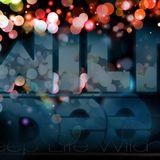 Wild Dee - Amaze (2013 first mix)