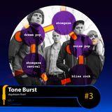 Tone Burst #3
