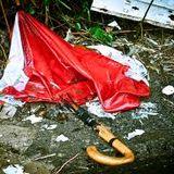 Broken Umbrella 4