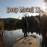 Deep MousE 13