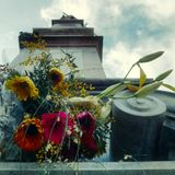 flores abandonadas (捨てられた花)