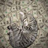17.09.16 | UPS, SEXY #11 £$€ C.R.E.A.M. £$€ Basstronauci w Radio Kampus 97,1 FM (Wwa)