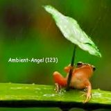 Ambient-Angel (123)