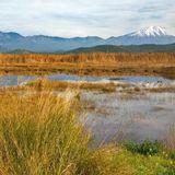 ΕΚΠΟΜΠΗ ΒΑΒΥΛΩΝΙΑ 17-02: Ο υγροβιότοπος Κολοβρέχτης λεηλατείται από την 'ανάπτυξη'