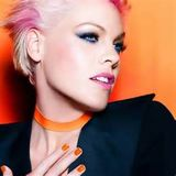 Pink Tribute (DJ Bri Guy MegaMix)