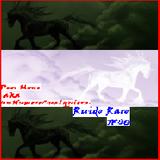 Poor Mono - Ruido Raro #00 Martes13.06.17