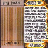 DJ Greg Packer - Jungle Mix side B - mixtape from 1996 (128kb/s)