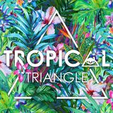 Tropical Triangle 2016