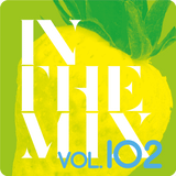 Christian Green - In The Mix (Vol. 102)