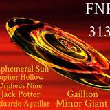 """FNP 313 """"SS"""" 02-13-2018"""