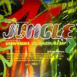 J.Bo Tape #13: Grooverider - Fantazia Takes You Into The JUNGLE - Nov1994