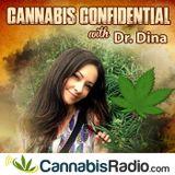 Cannabis and LGBT Activist Dennis Peron