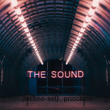 The Sound: {techno-set} princemo/eoy/2017