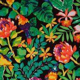 Tropical Rainforest Mix
