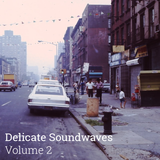 Delicate Soundwaves Volume 2