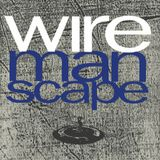 Wire - You Hung your Lights in the Trees - A Craftsman's Touch