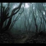 Demon Cleaners - Temporada 8 Episódio 10 - Demónios Da Floresta