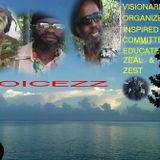 V.O.I,C.E.Z.Z. VISIONARIES. ORGANIZED. INSPIRED. & COMMITED. to EDUCATE. with ZEAL. & ZEST.