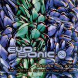 Paradise FM - Radioshow on Evosonic Radio Cologne 1997 (with Nick Taylor)