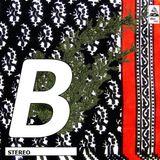 BORBY NORTON - B/ETHNIC/#2 - FULL FISH