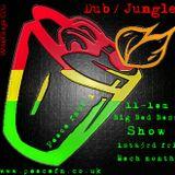 D'n'B Mix from Big Bad Bass Show. Peace FM 90.1. 6th Apr 12.