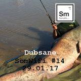 Dubsane - SomWiFi #14 29.01.2017