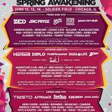 Afrojack - Live @ Spring Awakening Music Festival 2015 (Chicago, USA) - 14.06.2015