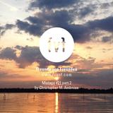 Freunde von Freunden Mixtape #21 pt. 2 by Chris Ambrose