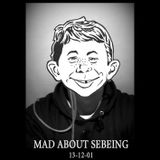 Mad about Sebeing (2013.12.07)