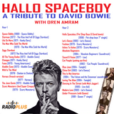 Hallo Spaceboy - A tribute to David bowie 110116