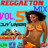 Reggaeton Mix Vol.5 (d[-_-]b)DjYunior