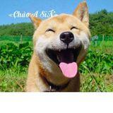 NST--đƯa nỘi Đi lẮc!!-- Sĩn Độ Múc!! :)