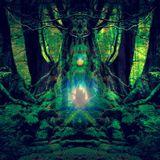 Oak roots ( Forestpsy sEt 2019)
