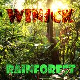Winick - rainforest @ mixtape