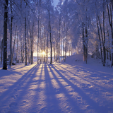 Winter Deepness 2015