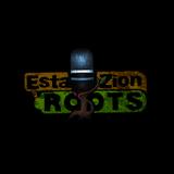 37º Programa de EstaZion Roots