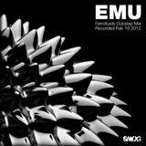EMU - Ferrofluids Mix 2-18-12
