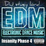 EDM Insanity Phase 4 NYE 2014