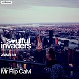 Soulful Invaders | 238MR Set | Mr Flip Calvi