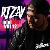 DJ Zay miniMIX Vol.12