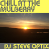 Steve Optix - Chill Out at The Mulberry 27th July 2018